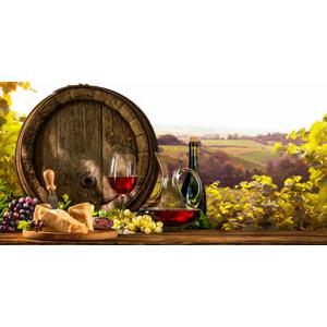 Neobmedzená konzumácia vína, živá hudba a polpenzia pre dvoch v penzióne V Zahraničí v Bořeticích