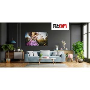 Prémiový obraz na kvalitnom plátne v krásnych farbách z vlastnej fotografie so skrytým rámom s osobným odberom až v 40 predajniach FaxCOPY zdarma