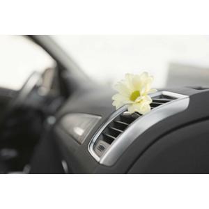 Servis klimatizácie účinným ozónom v Ružinove